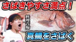メジロッテペコ亭による魚さばき教室!真鯛編
