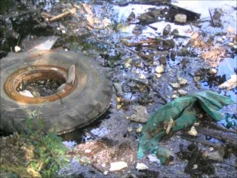 water pollution causes effects