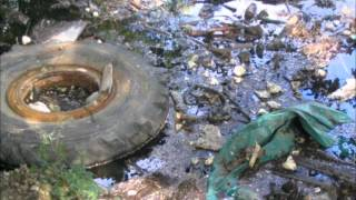 The causes and effects of the land, air, and water pollution problem