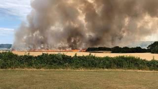 Fire breaks out in field of crops in Sheringham