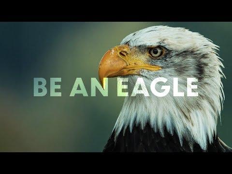 be-an-eagle-|-michael-hellickson