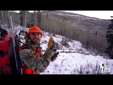 Colorado Elk Hunt 2018