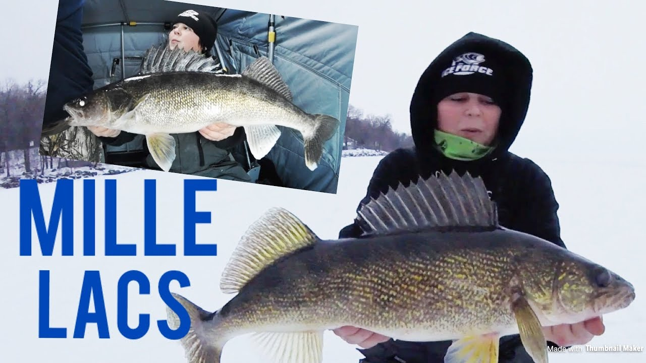Ice fishing walleyes mille lacs lake youtube for Mille lacs ice fishing