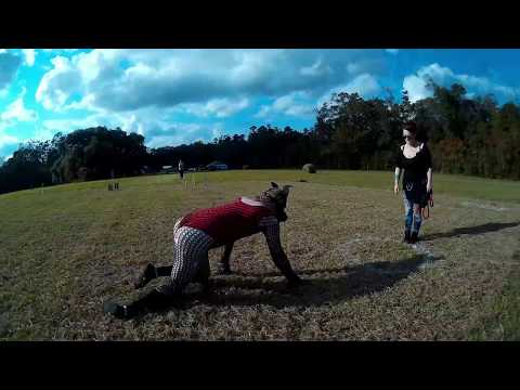 beautiful girl playing with her dog at home, how to training cute puppy #18 from YouTube · Duration:  41 seconds