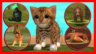 СИМУЛЯТОР Маленького КОТЕНКА #28 МЫ СДЕЛАЛИ ЭТО кошка ИГРАЕТ с КОТЯТЯМИ ДЕТСКИЕ ИГРЫ