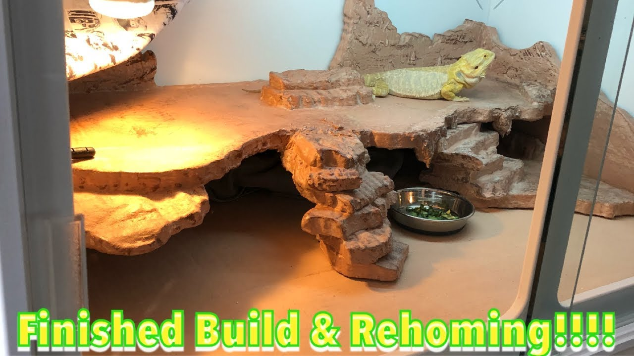 T3 Cage Build Customization Part 3 The Final Youtube Bearded dragon breeding background info. t3 cage build customization part 3 the final