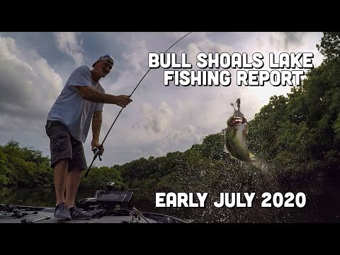 Bull Shoals Lake Fishing Report | Early July | Del Colvin