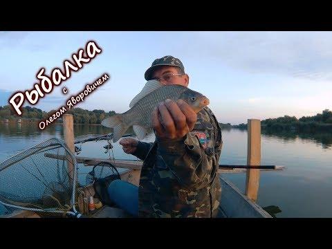 рыбалка на карася и карпа на поплавочную удочку летом видео