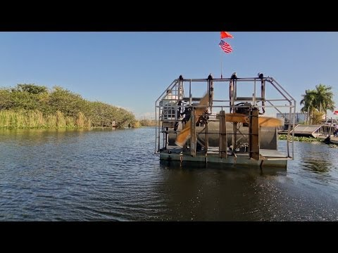 Fort Lauderdale - Everglades: Airboat Ride (Crown Princess Excursion)