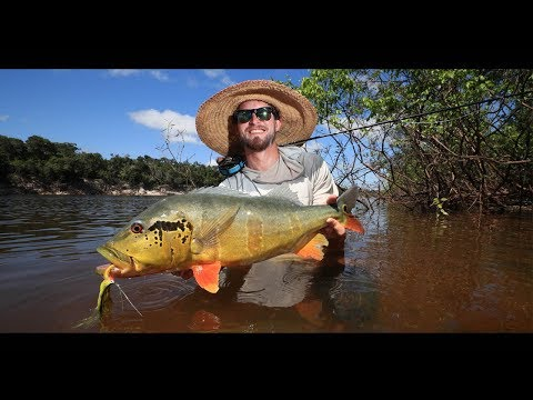 Agua Boa Amazon Lodge - Fly Fishing For Peacock Bass In Brazil
