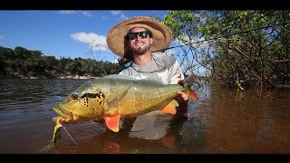 Agua Boa Amazon Lodge - Fly Fishing For Peacock Bass In Brazil