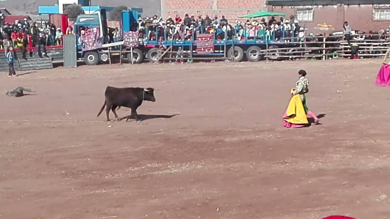 Download torero peruano vs  boliviano en desaguadero por las fiestas patrias