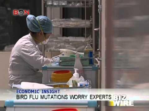 Bird flu mutations worry experts - Biz Wire - April 17, 2013 - BONTV China