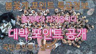꽃게포인트 공개  설마 그곳이 국민포인트?