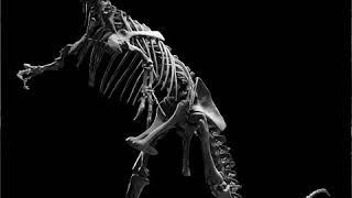 Pleistocene | Wikipedia audio article