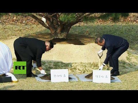 Los líderes de las dos Coreas plantan un árbol en la frontera como símbolo de paz