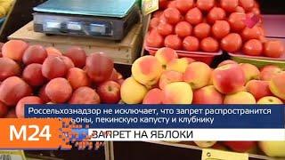"""Смотреть видео """"Москва и мир"""": безопасность метро и запрет на яблоки - Москва 24 онлайн"""