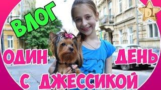 ✬ Влог.  Проводим день с моей собакой Йорком.  Купаем, ведем в салон красоты, покупаем вкусняшки
