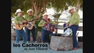 Los Cachorros - Corridos Mix 1 (en vivo desde el tamarindo)