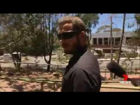 RBT Refusal - Cooroy, Queensland, Australia - 1st Court Attendance*