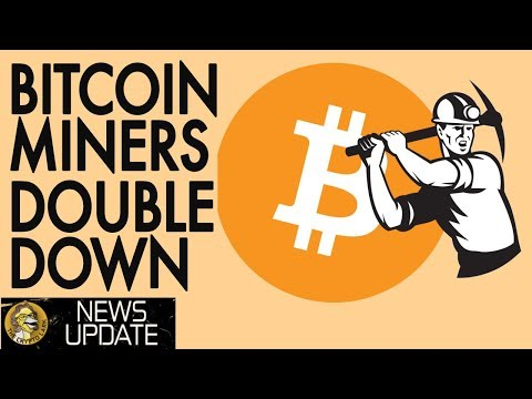 Bitcoin Miners Double Down in Face Of BTC Price Crash – Cryptocurrency News