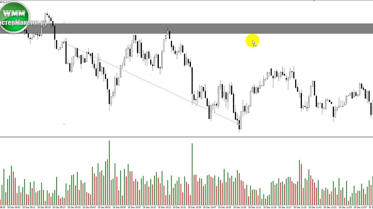 Торговля валютами форекс торговля на форекс для начинающих