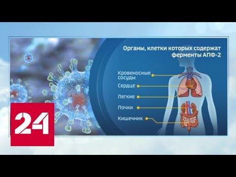 Курение и иммунитет: эксперт объяснил, почему так много молодежи на аппаратах ИВЛ - Россия 24