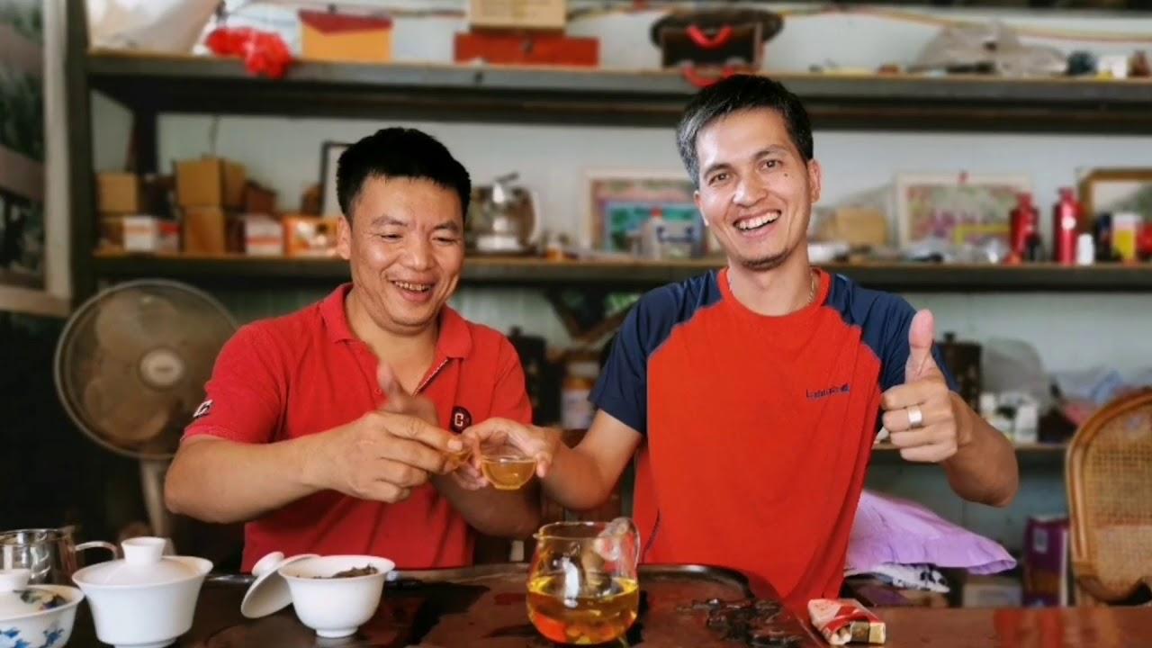 香港中樂號專注古樹茶領域十七年。多次榮獲香港國際普洱茶「冠軍」 - YouTube