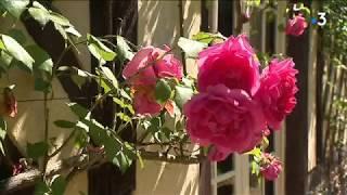 La fête des roses à Gerberoy