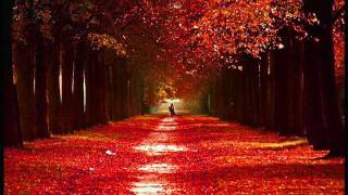 Azer Bülbül - Aşkımız Yarım Kaldı