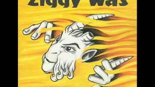 Ziggy Was -- Unicorn Pan