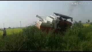 Kubota harvester accident