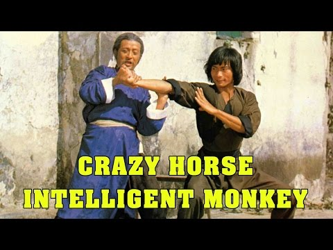 Wu Tang Collection - Crazy Horse and Intelligent Monkey