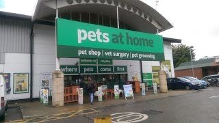 GOING TO PETS AT HOME   | Malica Hamilton