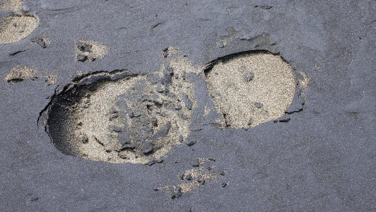 песок с илом