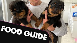 Rottweiler Nutrition Guide! What should I feed my Rottweiler puppy and how much?