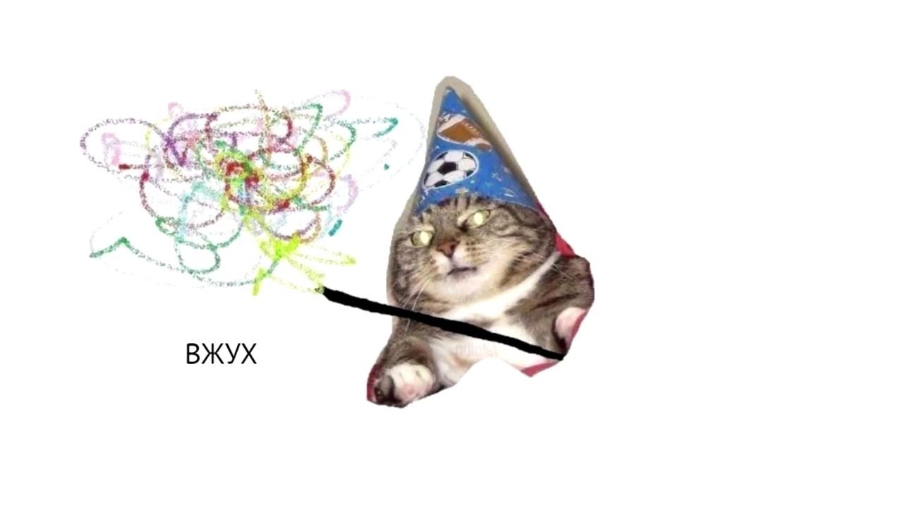 Вжух Кот