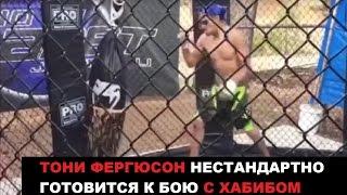 ТОНИ ФЕРГЮСОН ТРЕНИРОВКА ПЕРЕД UFC 209