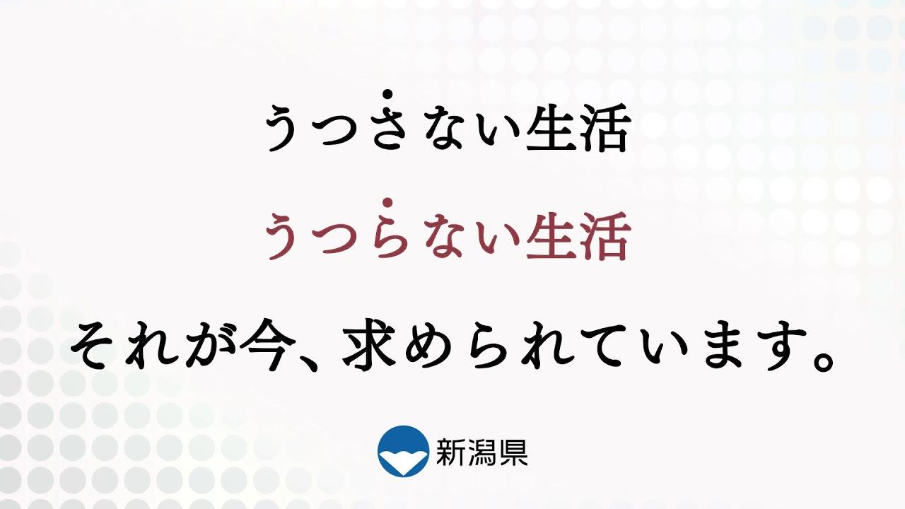 コロナ 最新 県 情報 新潟