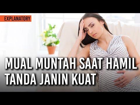 Video clip hay Sering Mual Saat Hamil Petanda Bayi Anda ...