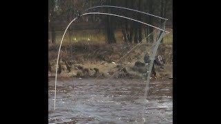 Риболовля на ПАВУКА на початку квітня в малих протоках.........