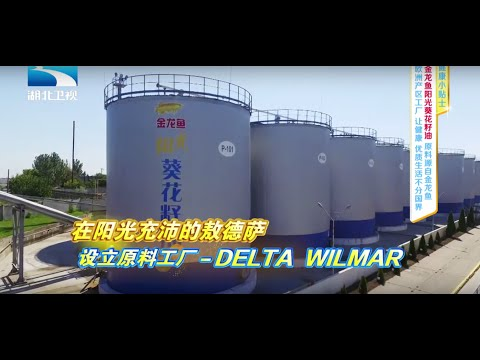 (Chinese version) Yihai Kerry Arowana TV show UNCUT -Delta Wilmar CIS factory introduction+TV show