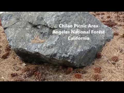Chilao Picnic Area, Angeles National Forest ... by Alice B. Clagett