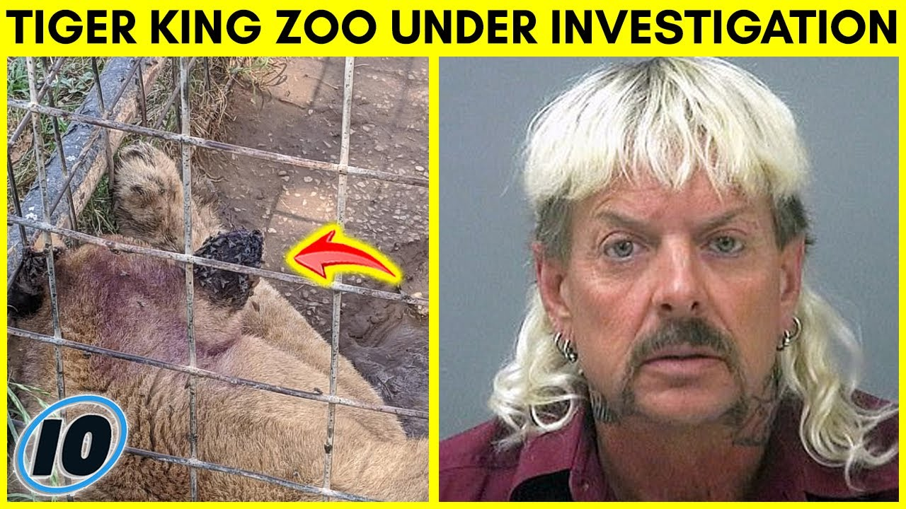 Zoo From Tiger King Under Investigation