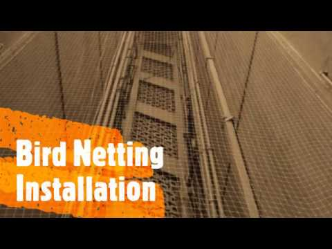 Bird Netting Installation -  Sadguru Facility - Call 7208091124