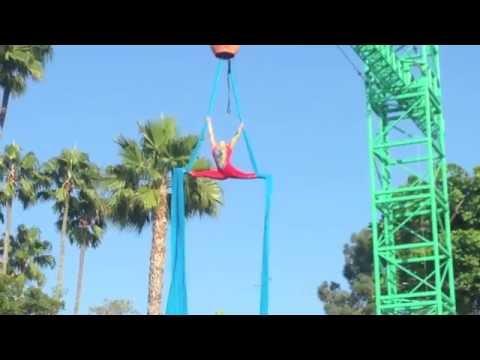 Brande Lee Cirque De La Mer