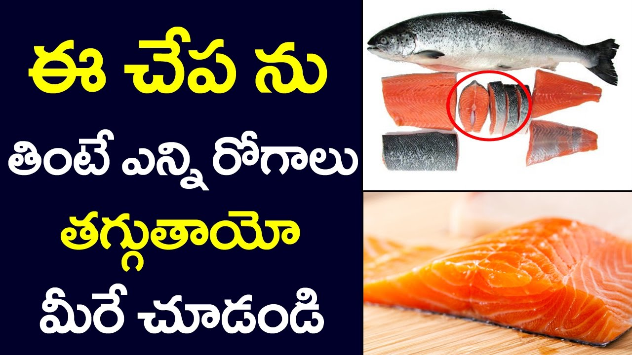 Benefits of eating salmon fish health benefits of salmon for Names of fish to eat