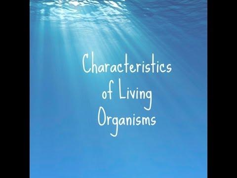 (3) IGCSE Biology in 60 Seconds - Characteristics of Living Organisms