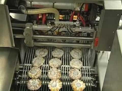 Bakon USA Bakery Equipment - Automatic Fondant Sprayers
