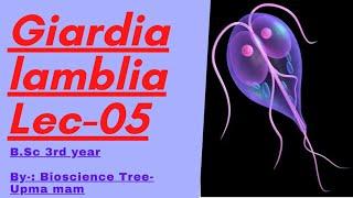 hogyan lehet kontrollálni a gyermeket a giardiasis miatt)